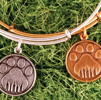 For the Four-Legged Fanatics: Paws for a Cause